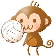 国体選考 熊本バレーボール