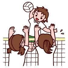 第6回東北高等学校新人バレーボール選手権大会 要綱&組合せ