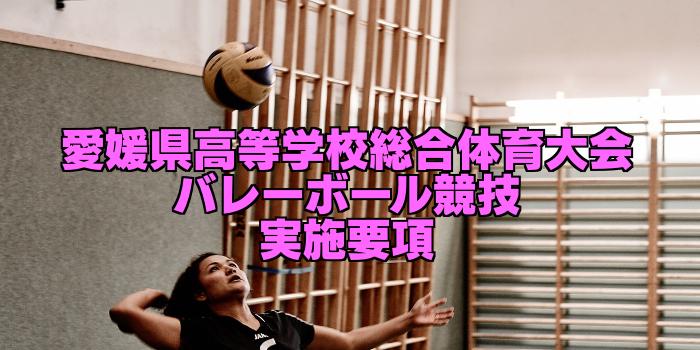 【組合せ決定】2017愛媛県高校総体バレーボール(インターハイ) 実施要項