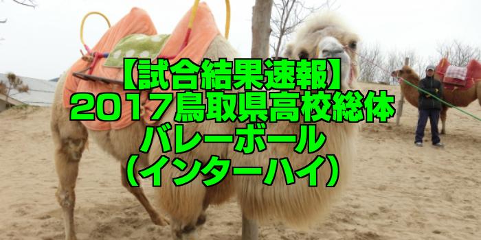 【試合結果速報】2017鳥取県高校総体バレーボール(インターハイ)