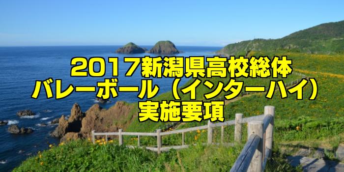 【組合せ決定】2017新潟県高校総体バレーボール(インターハイ) 実施要項
