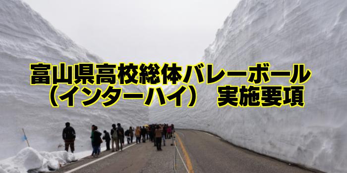 【組合せ決定】2017富山県高校総体バレーボール(インターハイ) 実施要項