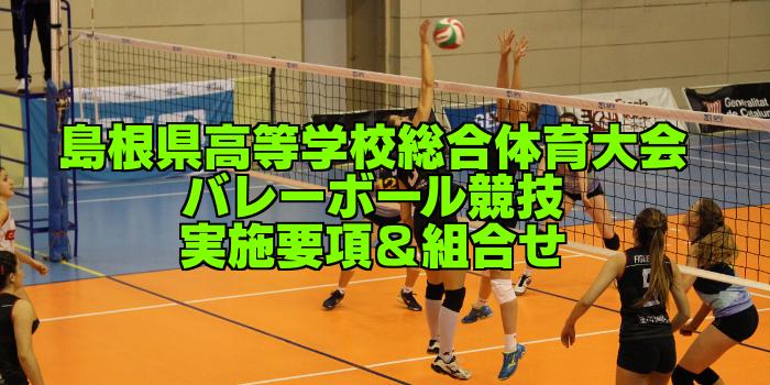 【組合せ決定】2017島根県高校総体バレーボール(インターハイ) 実施要項