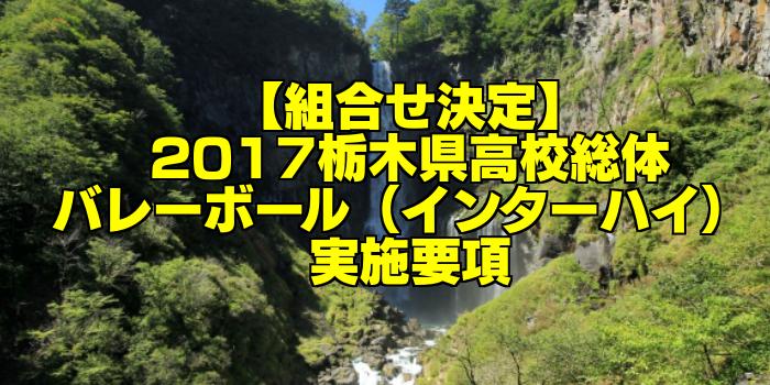 【組合せ決定】2017栃木県高校総体バレーボール(インターハイ) 実施要項