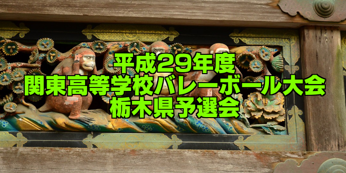 【試合結果】平成29年度 関東高等学校男女バレーボール大会 栃木県予選会