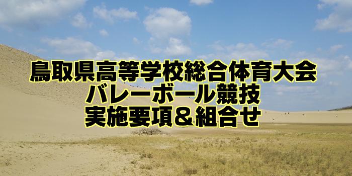 【組合せ決定】2017鳥取県高校総体バレーボール(インターハイ) 実施要項