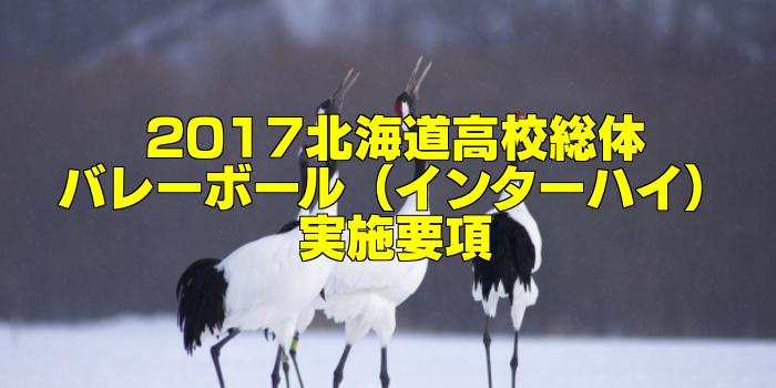 【組合せ決定】2017北海道高校総体バレーボール(インターハイ) 実施要項
