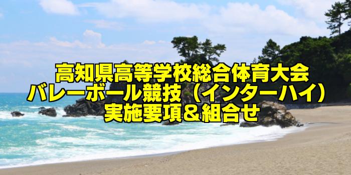 【組合せ決定】2017高知県高校総体バレーボール(インターハイ) 実施要項