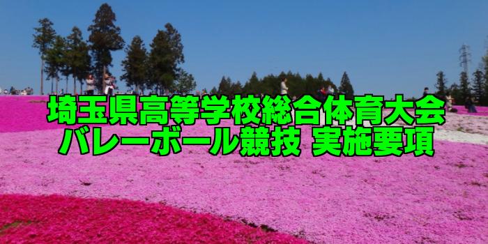 【インターハイ予選】埼玉県高等学校総合体育大会バレーボール競技 実施要項