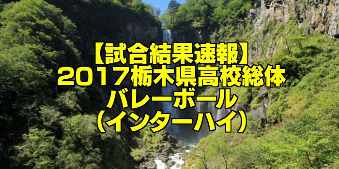【試合結果速報】2017栃木県高校総体バレーボール(インターハイ)