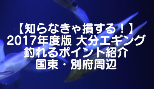【知らなきゃ損する!】2017年度版 大分エギング 釣れるポイント紹介 国東・別府周辺