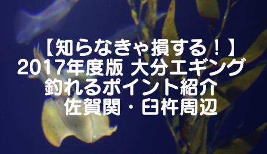 【知らなきゃ損する!】2017年度版 大分エギング 釣れるポイント紹介 佐賀関・臼杵周辺