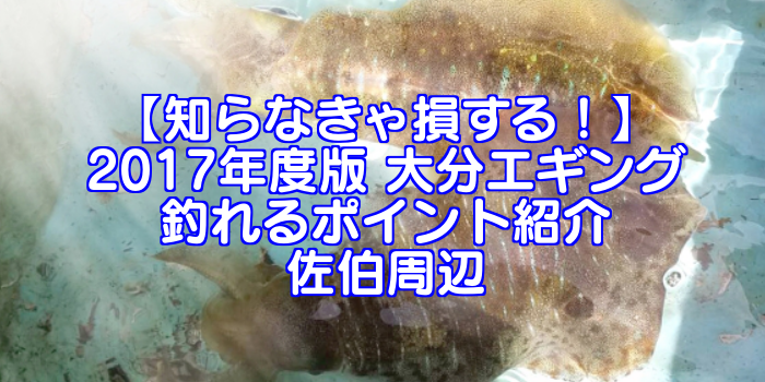 【知らなきゃ損する!】永久保存版 大分エギング 釣れるポイント紹介 佐伯周辺