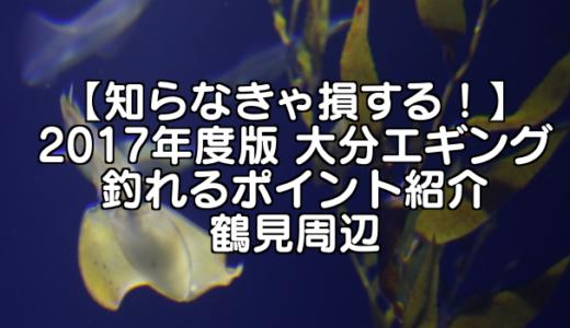 【知らなきゃ損する!】2017年度版 大分エギング 釣れるポイント紹介 鶴見周辺