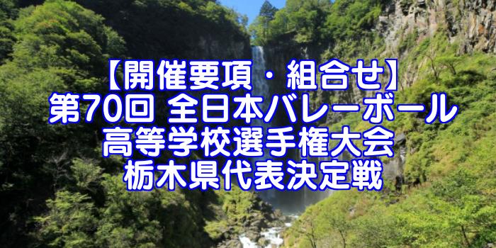 【要項・組合せ】2018年 第70回 全日本バレーボール選手権(2017年度春高バレー) 栃木県決定戦
