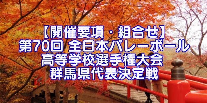 【要項・組合せ】2018年 第70回 全日本バレーボール選手権(2017年度春高バレー) 群馬県決定戦