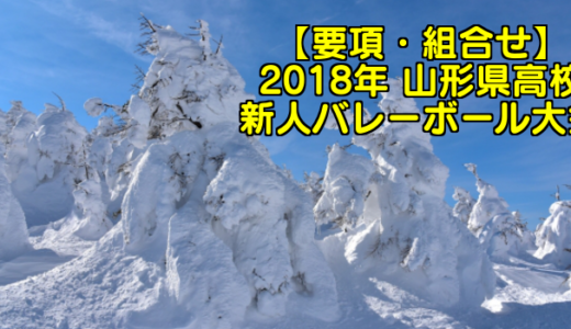 【2018新人戦】山形県高校新人バレーボール大会 要項・組合せ