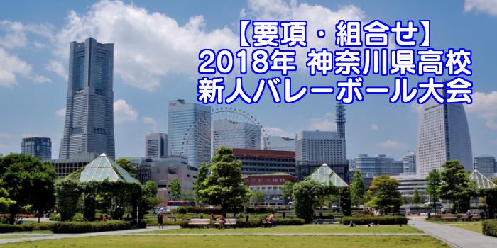 【2018新人戦】神奈川県高校新人バレーボール大会 要項・組合せ