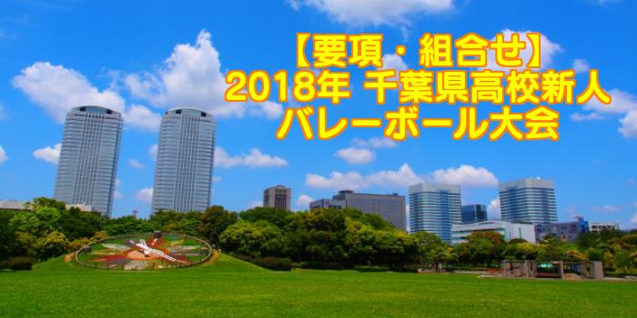 【2018新人戦】千葉県高校新人バレーボール大会 要項・組合せ