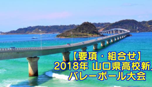【2018新人戦】山口県高校新人バレーボール大会 要項・組合せ