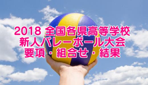 【2018新人戦】 全国各県高等学校新人バレーボール大会 要項・組合せ・結果