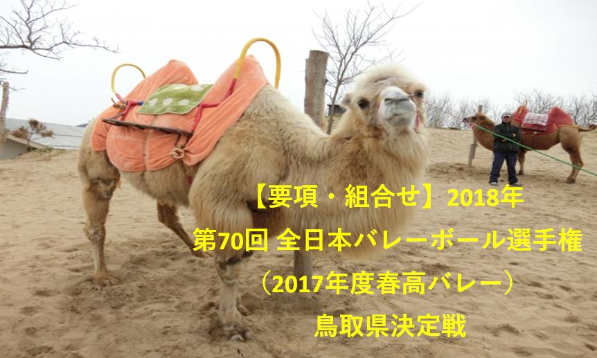 【要項・組合せ】2018年 第70回 全日本バレーボール選手権(2017年度春高バレー) 鳥取県決定戦