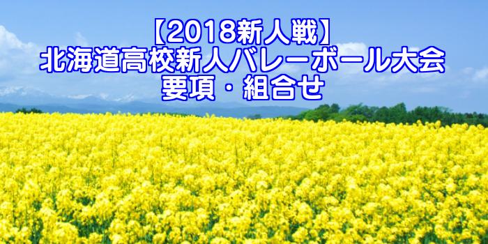 【2018新人戦】北海道高校新人バレーボール大会 要項・組合せ