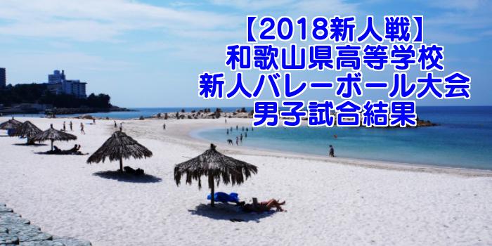 【2018新人戦】和歌山県高等学校新人バレーボール大会 男子試合結果
