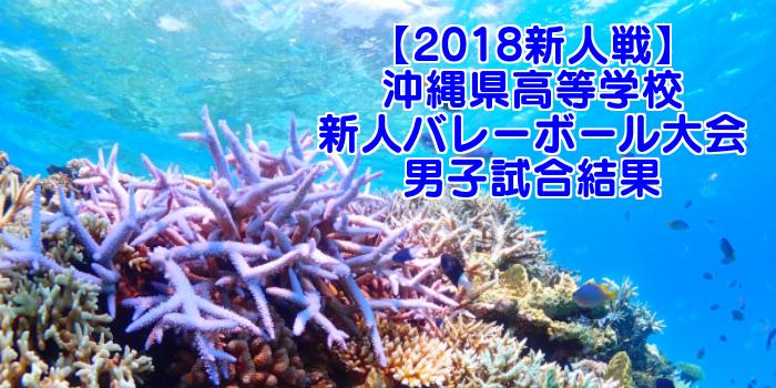【2018新人戦】沖縄県高等学校新人バレーボール大会 男子試合結果