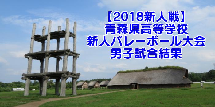 【2018新人戦】青森県高等学校新人バレーボール大会 男子試合結果