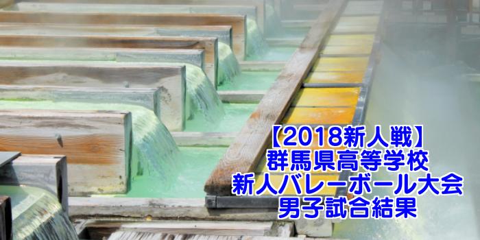 【2018新人戦】群馬県高等学校新人バレーボール大会 男子試合結果
