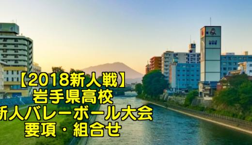 【2018新人戦】岩手県高校新人バレーボール大会 要項・組合せ