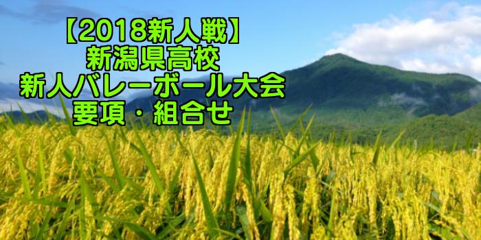 【2018新人戦】新潟県高校新人バレーボール大会 要項・組合せ
