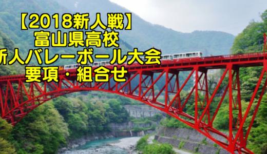 【2018新人戦】富山県高校新人バレーボール大会 要項・組合せ