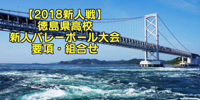 【2018新人戦】徳島県高校新人バレーボール大会 要項・組合せ