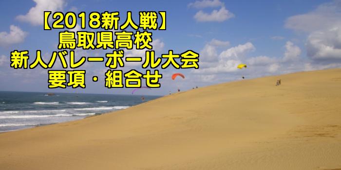 【2018新人戦】鳥取県高校新人バレーボール大会 要項・組合せ