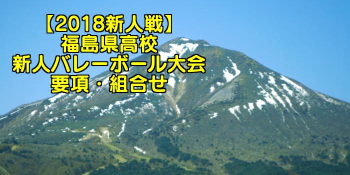 【2018新人戦】福島県高校新人バレーボール大会 要項・組合せ