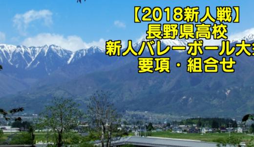 【2018新人戦】長野県高校新人バレーボール大会 要項・組合せ