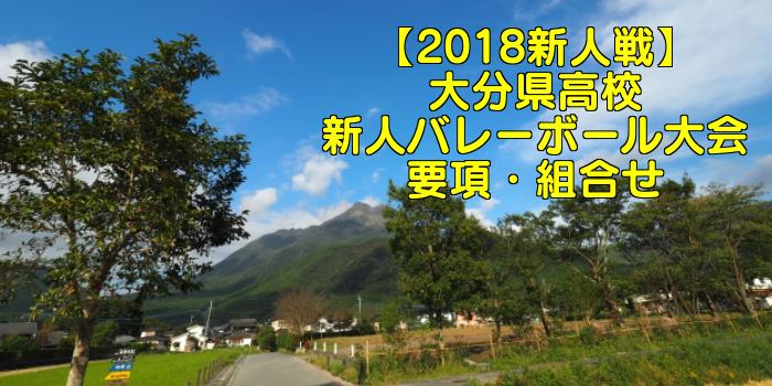 【2018新人戦】大分県高校新人バレーボール大会 要項・組合せ