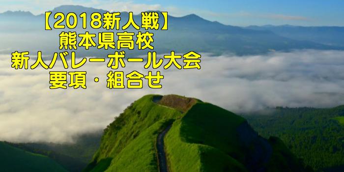 【2018新人戦】熊本県高校新人バレーボール大会 要項・組合せ