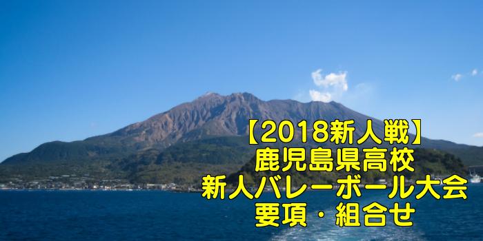 【2018新人戦】鹿児島県高校新人バレーボール大会 要項・組合せ