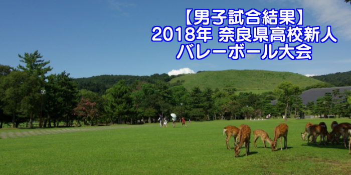 【2018新人戦】奈良県高等学校新人バレーボール大会 男子試合結果