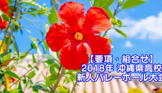 【2018新人戦】沖縄県高校新人バレーボール大会 要項・組合せ