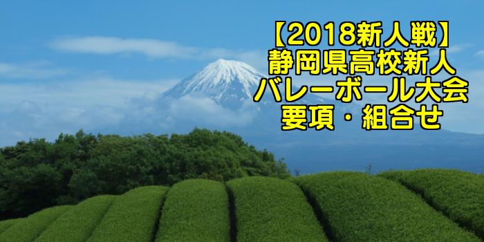 【2018新人戦】静岡県高校新人バレーボール大会 要項・組合せ