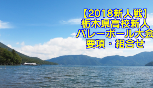 【2018新人戦】栃木県高校新人バレーボール大会 要項・組合せ