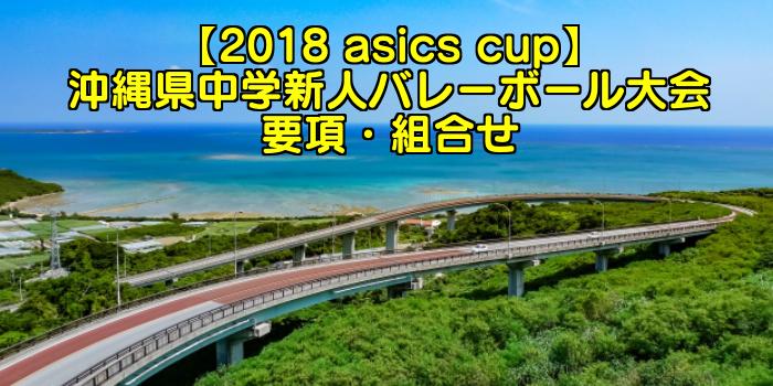 【2018 全九州選抜予選】沖縄県中学新人バレーボール大会 要項・組合せ