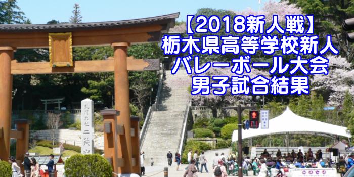 【2018新人戦】栃木県高等学校新人バレーボール大会 男子試合結果