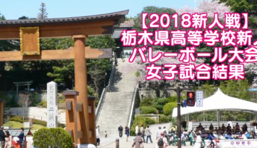 【2018新人戦】栃木県高等学校新人バレーボール大会 女子試合結果
