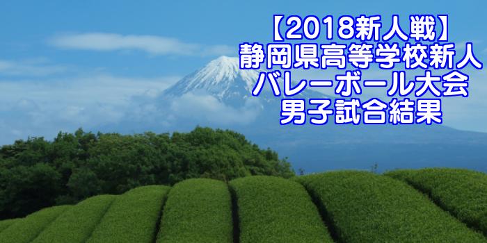 【2018新人戦】静岡県高等学校新人バレーボール大会 男子試合結果