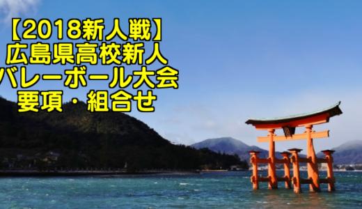 【2018新人戦】広島県高校新人バレーボール大会 要項・組合せ